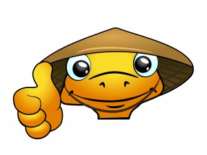 Hoi An Now mascot