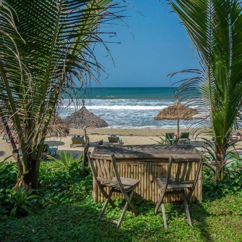 La Plage, palms, An Bang Beach, Hoi An