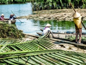 coconut palm village, hoi an, bike rides, motorbike, adventure tours, basket round boats