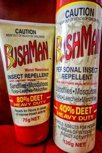 Health Living in Hoi An, deet insect repellant, dengue fever, hoi an, vietnam