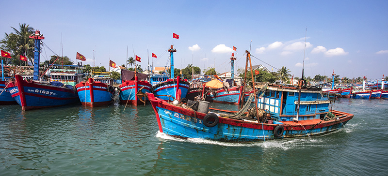 Ly Son, Vietnam. Fishing boats