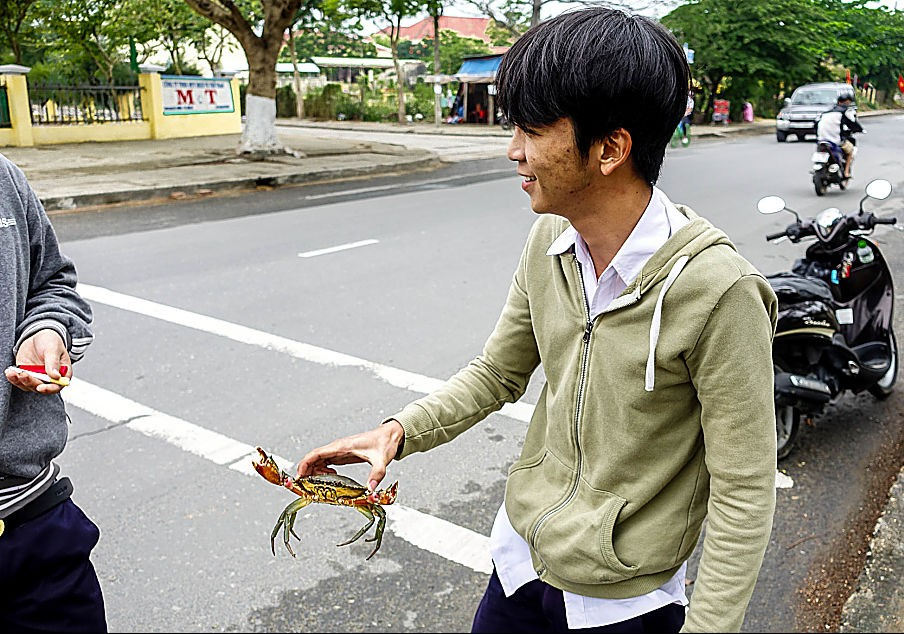 stories of hoi an, crab, vietnam