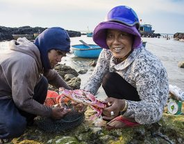 Ly Son. Crab fisherman sells his catch