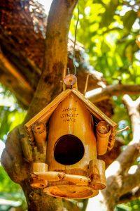 Taboo Bamboo Hoi An, birdhouse_opt