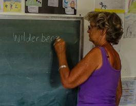 Teaching jobs in Hoi An
