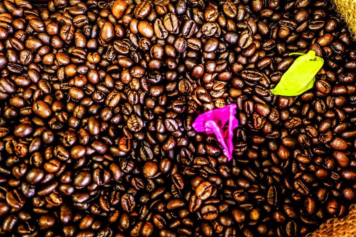 Ca Phe Viet. Coffee, hoi an