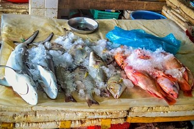 Hoi An's Central Market Fish