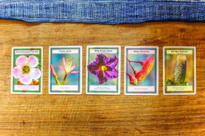 flower essence cards
