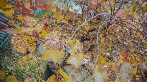 'After Korea, What's it Like Living in Vietnam?'-autumn-leaves