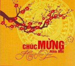 Hoi an now tet vietnamese new year hoi an now happy new year tet vietnamese new year m4hsunfo