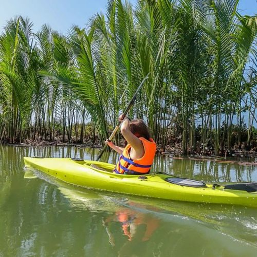 Hoi An Kayak Tours. Coconut Palms
