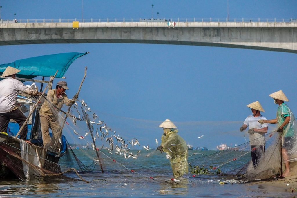 Hoi An Kayak Tours. Fishermen clear their nets.