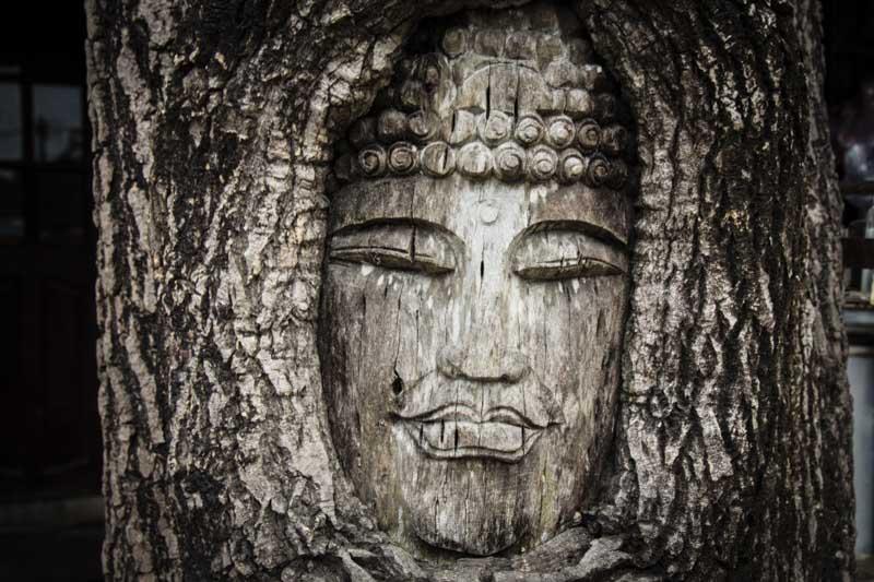 Alternative Hoi An Cycle Tour Buddha