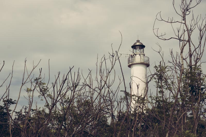 Alternative Hoi An Cycle Tour Lighthouse Above Trees
