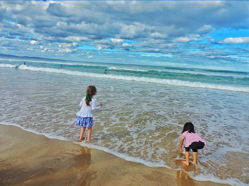 Beach-Nippers (stock)