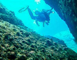 Hoi An Diving Center. Diver underwater