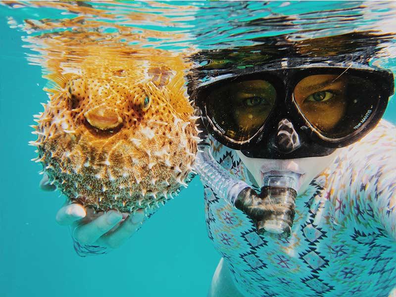 Diving-(Stock-Pic)