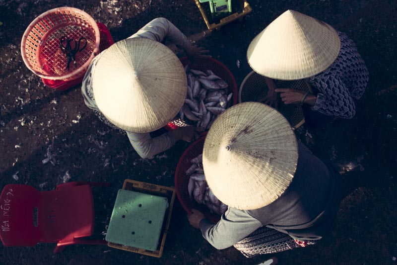 Hoi An Fish Market. Fish Market Hats
