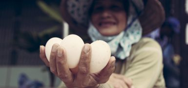 Hoi An Central Market Egg Lady