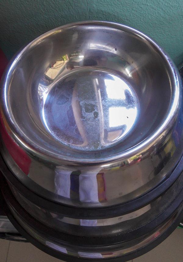 Nguyen Thanh Quang Pet Shop. Dog bowls