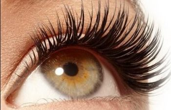 567165ae9df Hoi An Now | Eye-Lash Extensions; Hoi An Now's Travel Guide to Money ...