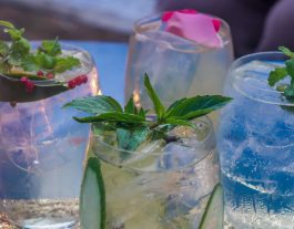 The T Room Gin Bar. Bars review. Landscape collection 2
