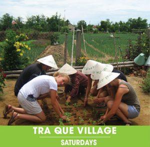 Tra Que Village. Hoi An Express Widget - Saturdays