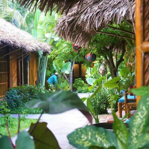 Under the Coconut Tree Hoi An. An Bang Beach