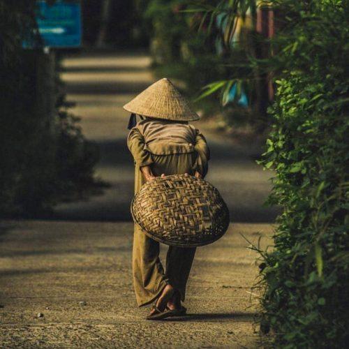 hoi an, rice fields, photography tours, danang trip, hoi an, vietnam