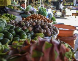 Hoi An Street Safari - fruit and veg marke