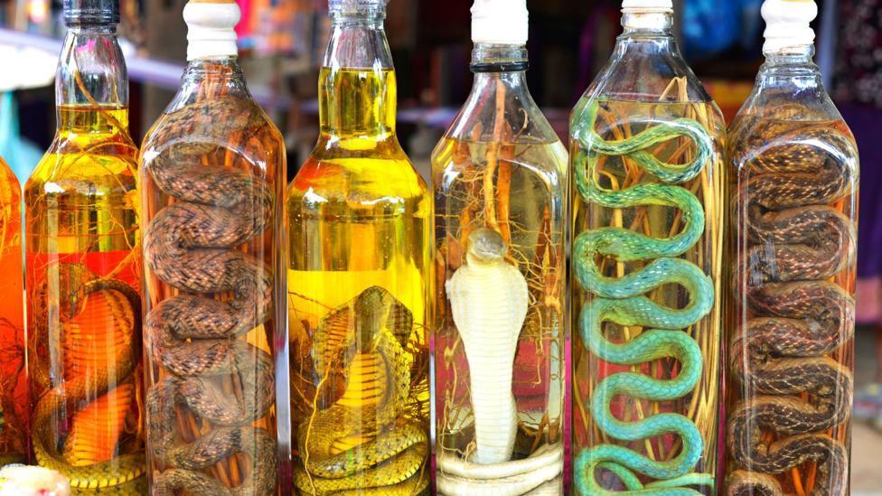 Tet Wine. Tet Holiday. Vietnamese Lunar New Year. Festivals in Vietnam